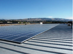 Photo 11. One megawatt PV array on a single building